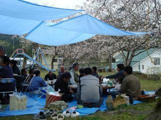 花曇りのお花見 2008.4.6