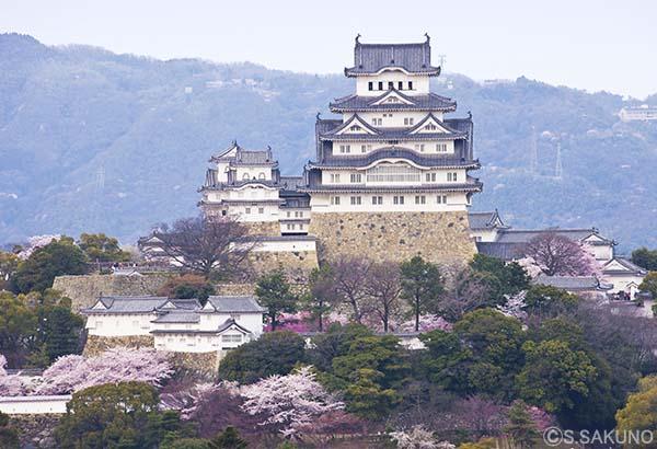 姫路城024W5014