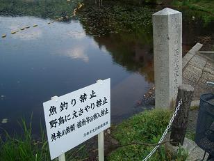 天然記念物 深泥池水生植物群落