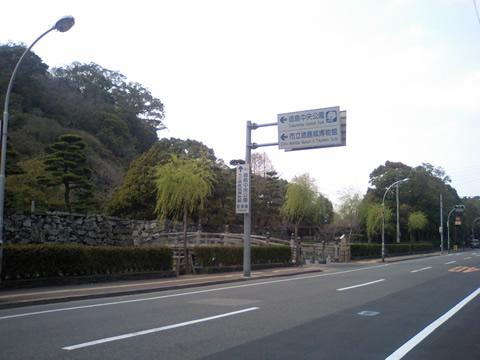 とくしまマラソン(スタート地点1)