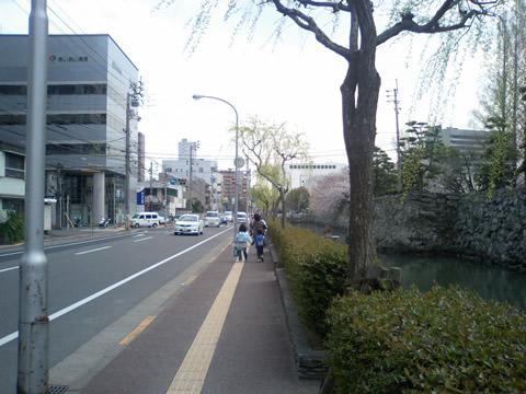 とくしまマラソン(スタート地点2)