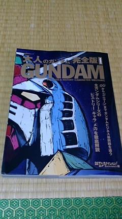 adult gundam1