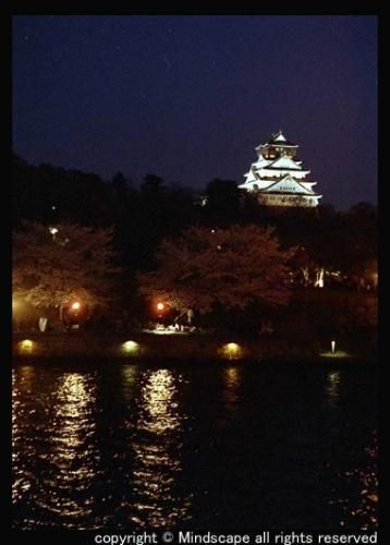 大阪城とサクラ2