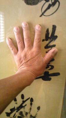 ベルパパの手