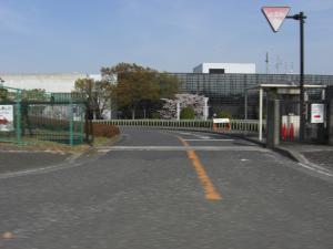 midoriyama
