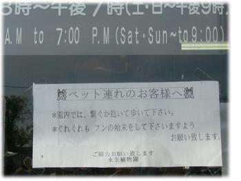 2008070411.jpg