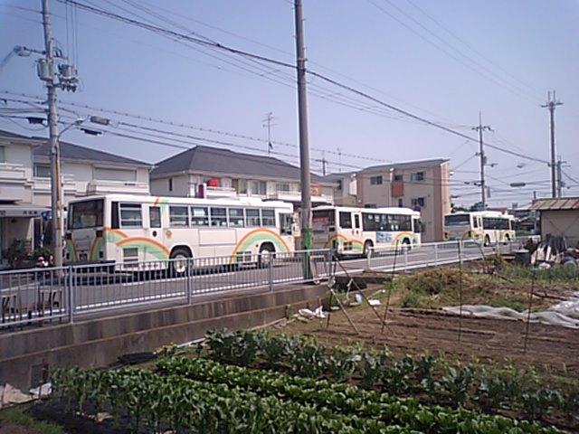 20080526133021.jpg