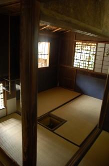 DSC_0619高桐院