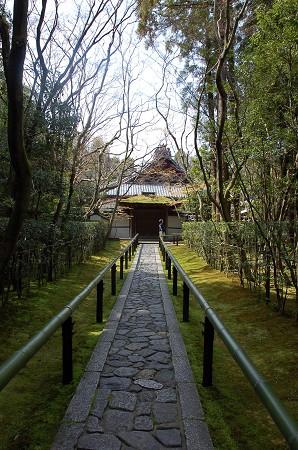 DSC_0636高桐院