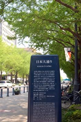 DSC_1138大通り