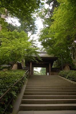 DSC_1784鎌倉