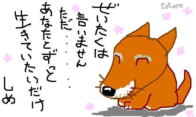 832770327_158.jpg