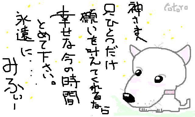 832880107_224.jpg