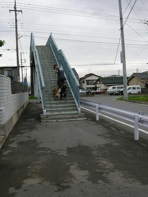 オンボロ歩道橋