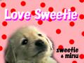 sweetydog