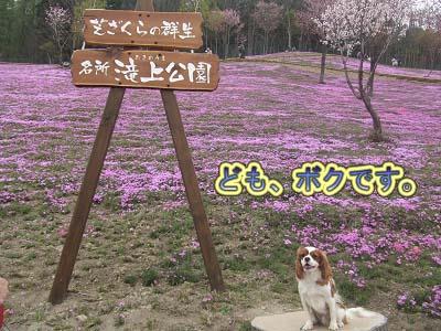すでに札幌から車で3時間半走ってきました。