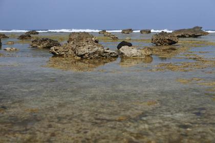 あやまる海岸-3