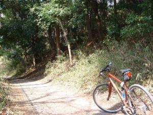 狭山湖周回640