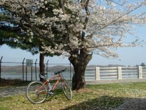 狭山湖2640