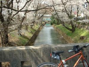 多摩川浄水2