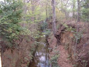 多摩川上水渓谷