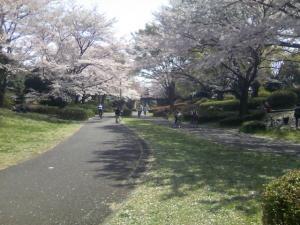 昭和祈念公園内
