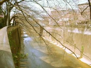 石神井川中流