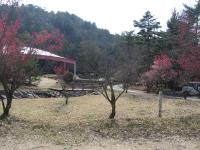 いこいの森弘法山-13