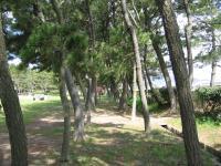 境港公共マリーナ-6