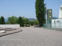桜井浜ふれあい広場-15