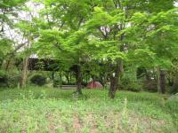 千本高原キャンプ場-6