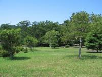 糸根地区公園-3