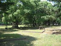 糸根地区公園-6