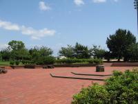 糸根地区公園-14
