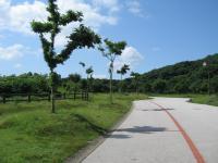 竜王山公園-8