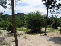 千坊川砂防公園-7