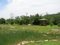 千坊川砂防公園-21