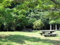 田万川キャンプ場-6