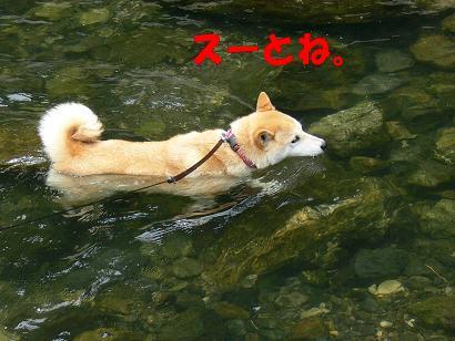 こうやって泳ぐのよ!