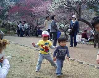 梅の公園で