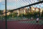 テニスコートはMooのテリトリーなのでわしはよくわからん。