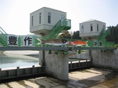 取水施設の鯉