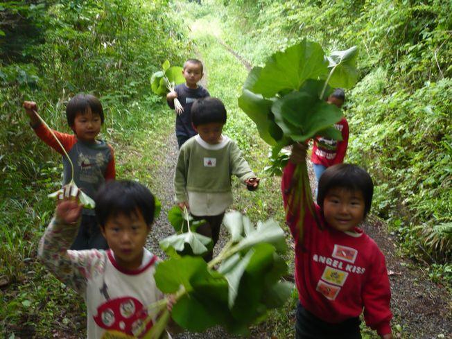 2008-4-fukitori-4.jpg