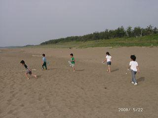 2008-g-kaigara-1.jpg