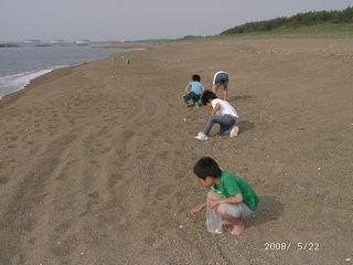 2008-g-kaigara-4.jpg
