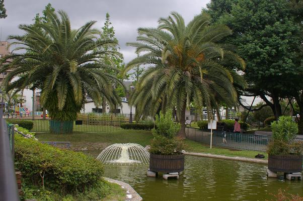 ベルモント公園の庭