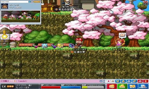 Maple0032_convert_20080714170811[1]