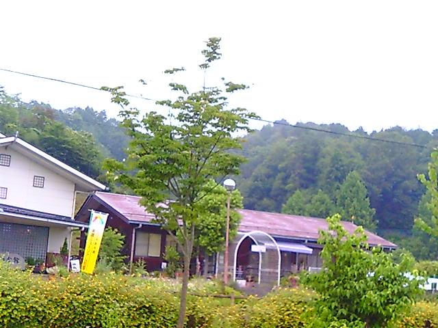 F1010018.jpg