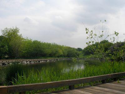 金山公園02