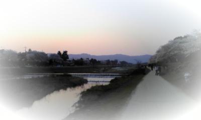 賀茂川の夕日